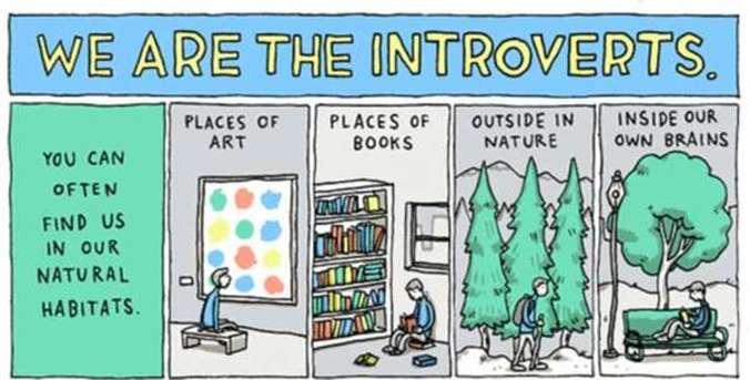 mi smo introverti