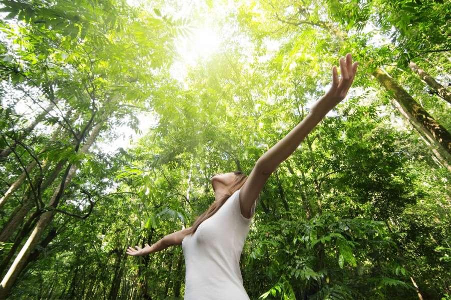 narava zdravi
