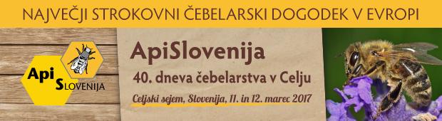 sejem ApiSlovenija 2017