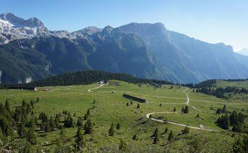 Planina Pecol, v ozadju kaninsko pogorje